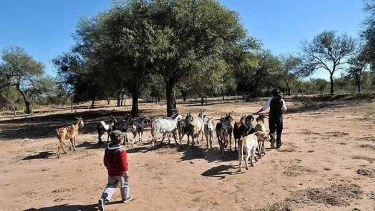 Campesinos resistieron la usurpación de sus tierras en el norte cordobés